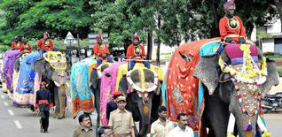 Six Dasara stars enter palace in style